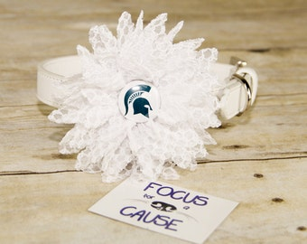 Michigan State Spartans Dog Collar Flower, Attachment, (Collar not included), Collar Flower, Dog Accessory, Photograpy Prop