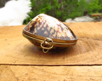 Vintage Real Shell Coin Purse - Shell Trinket Box