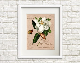 Flower Garden V Magnolia - Flower Artwork, Floral Art Print, French Country Style, Cottage Chic Style Room Decor, Fixer Upper Style