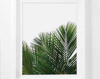 Palm Leaf Print, Palm Wall Art, Palm Leaf Decor, Plant Wall Art, Leaf Wall Art, Tropical Wall Prints, Palm Leaf, Tropical Art, Printable