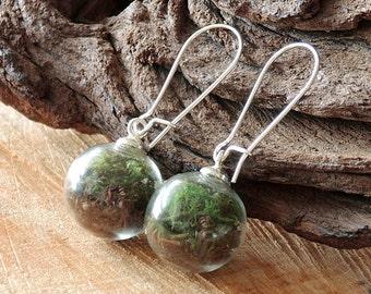 Moss and Earth Earrings Silver, Glass Globe, Real Flower, Terrarium