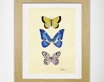 Butterfly Picture Butterfly Download Print Butterfly Wall Art Butterfly Artwork Butterfly Original - Yellow Blue & White Butterfly gift