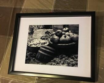 Apples, black and white, 8x10, fine art, Photo print