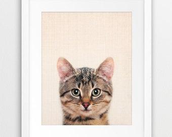 Cat Print, Nursery Wall Art, Cute Baby Animal, Nursery Decor, Animal Photography, Baby Gift, Domestic Animal, Kids Room Decor, Printable Art