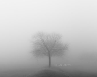 Tree - Fog - Tree Fog - Tree wall art - wall art - canvas - home decor - art - black and white- photography- tree in the fog wall art