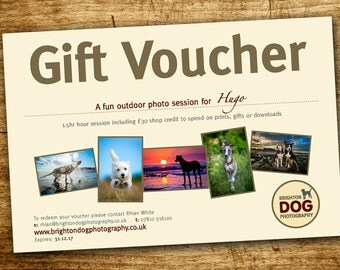 Pet photography gift voucher - for 1-2 dogs