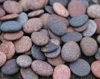Medium Sea Stones in Bulk 60 pcs Beach Stones