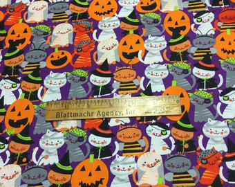 SUPER CUTE! Halloween Costumed Kitties! BTY