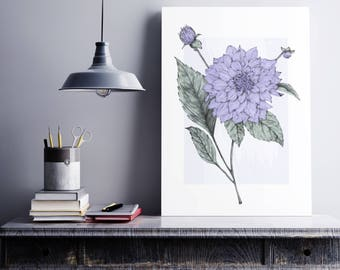 Floral Art Print, Dahlia Botanical print, flower art print, vintage botanical, vintage inspired poster, pencil illustration, botanical art