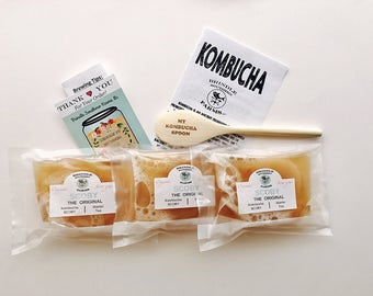 THREE kombucha SCOBY pack + 3 CUPS of strong starter kombucha + free wooden spoon + step-by-step instructions for fresh kombucha.