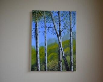 Graceful Summer Aspens, 12x16' original acrylic landscape painting, summer painting, forest painting, aspen painting, trees painting