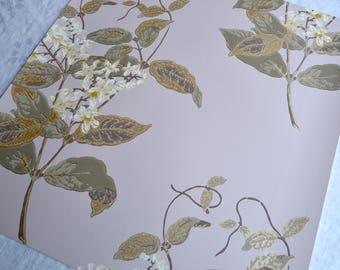 Wallpaper - Cole and Son  Sample Sheet  - 19 x 17  Madras Violet on Pale Pink Lavender