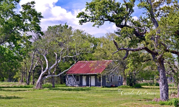 ACADIAN CABIN ~ Creole Cottage ~ Cajun Decor ~ Louisiana Fine Art ~ Color or Black and white ~ Travel Photography ~ Abandoned Building ~ AC3