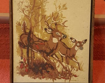 Beautiful Vintage 1977 sand wall art picture of white tail deer Rainbow Way Ltd!