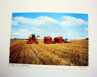 Harvest Time in Saskatchewan Postcard / Farming Postcard / wheat fields / combines /