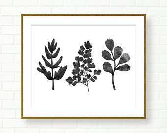 Ferns Print, PRINTABLE, INSTANT DOWNLOAD, Botanical Art, Poster, Black White Wall Art, Leaves, Natural History, Wall Decor, Minimalistic
