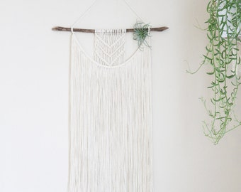Boho Macrame Wall Hanging with Air Plant