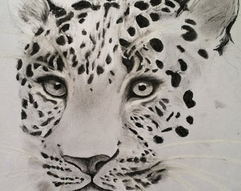 Crystal clear jaguar Framed original drawing