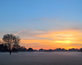 panorama of the misty sunset