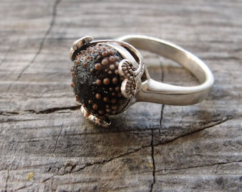 Sterling Silver Ring, Brown Sea Urchin Ring, Art Nouveau Style, One of a Kind Size 7