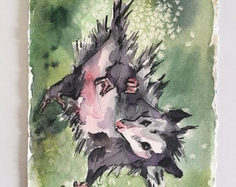 Possum Painting - Watercolor Art of a Possum Hanging Upside Down - Upsidedown Cutie - Animal Watercolor Painting of Opposum