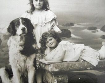 Antique dog photo postcards, Antique dog with girls photo postcard, Antique Saint Bernard dog photo postcard, pretty girls photo postcard