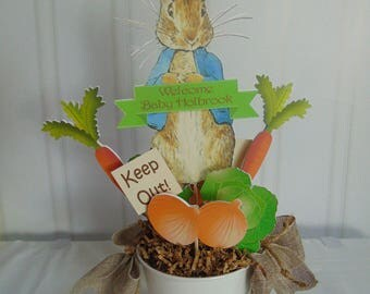 Peter Rabbit Centerpieces Beatrix  Potter bunny  Easter 1st birthday party decorations baby shower birthday