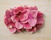 Beautiful pink hydrangea hair comb vintage rockabilly style wedding 40s 50s pin up bride hairflower haircomb boho