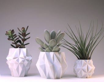 Small Modern Planters Housewarming Gift Architecture Modern Home Design Gift Set of 3
