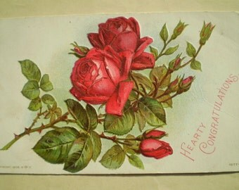 Red Roses - Early 1900s - Belvidere, Illinois - Antique American Postcard - Hearty Congratulations