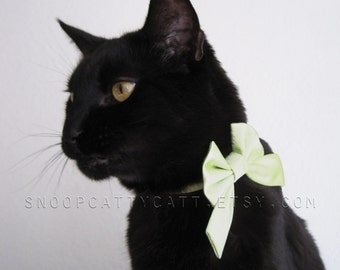 Lady Cat Bow - Lucky Charm