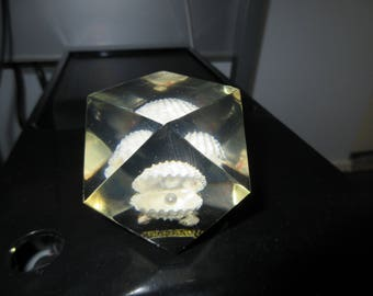 Nassau Geo acrylic shell with pearl paperweight  Vintage Lucite Paper Weight Hand Made Poly Quartz Shell with Pearl Marked Nassau