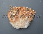 Natural feathers rooster schlappen, striped rusty brown red chinchilla real feathers for millinery, crafts / 4 in (10 cm) long / F142-4M