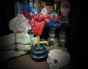 ANATOMICAl HEART  MODEL   miniature for dollhouses 1/12  scale. Medical model for cabinet of cusiosities
