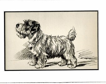 Antique Dog Print MATTED  Lucy Dawson Print, 1930s Terrier 5x7 Mounted Print Puppy Print, black & white Wall Decor, Book Page, B-5