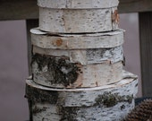 Set of 3 birch bark hat box, rustic north woods home decor, log cabin accents,