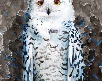 "Top quality A5 art print ""Shaman"" Snowy Owl painting 310gsm"