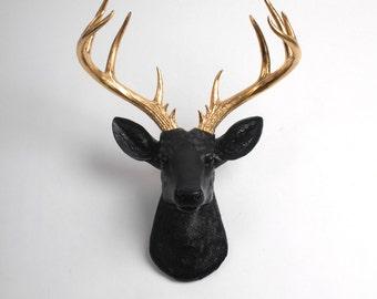Faux Taxidermy - Faux Deer - The XL Alexandr- Black + Gold Resin Deer Head- Stag Resin Black Faux Taxidermy - Modern Home Decor