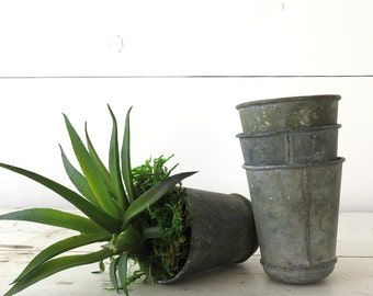 Zinc Seed Pots, Flower Pots, Galvanized Zinc, Industrial, Reproduction, Vintage Style French   BoulderBlueStudio
