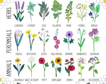 "Plant These to Help Save Bees 16x20"" Poster *OR* 8x10"" Print"