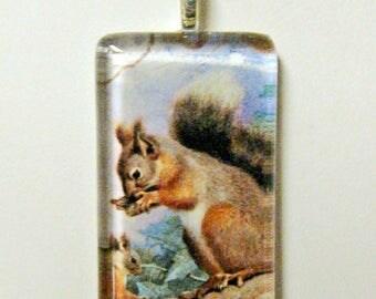 Common Squirrel pendant and chain - WGP02-016