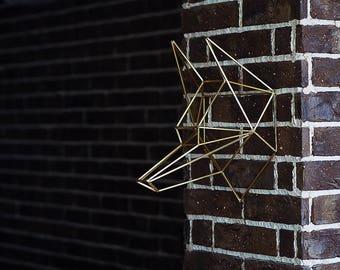 FLASH SALE / Wall Installation Wolf Head /  SALE