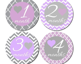 Baby Month to Month Stickers- Baby Girl Month Stickers- Milestone Baby Month Stickers- 12 month stickers- Milestone Sticker- G70