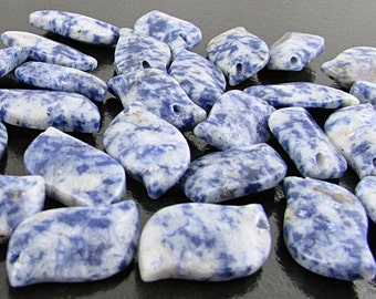 Sodalite Leaf Beads, Natural Blue Stone Overlapping 20mm Leaves S204