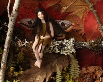 Autumn Fairy Shadowbox:  Seated Forest Fairy holding a delicate furled fern