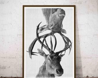 Deer Prints, Deer Antler, Deer Antler Decor, Woodland Nursery, Rustic Nursery Decor, Hunting Nursery, Hunting Wall Decor, Rustic Nursery