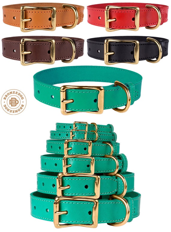 Brass Buckle Dog Collar Leather Red Green Black Brown