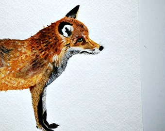 Fox painting, Original art, red fox, animal lover, watercolor painting, woodland animals, wall art