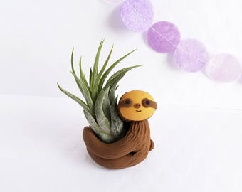 Sloth Air Plant Holder, Gift for Her, Planter, Air Planter, Best of Summer, Gift Women, Gift Under 30, Indoor Gardener, Cute Desk Accessory