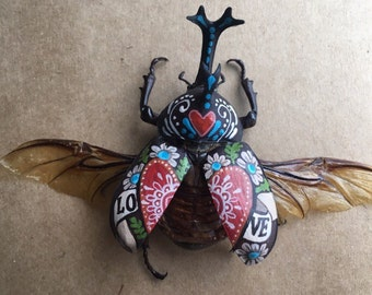 Handpainted Beetle